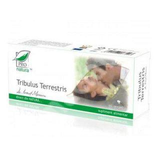 Tribulus terrestris, 30 capsule, Pro Natura